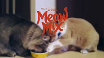 Meow Mix TV Spot, 'We'll Never Figure Them Out' - Thumbnail 7