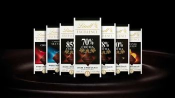 Lindt Excellence TV Spot, 'Mastering the Art of Refinement' - Thumbnail 7