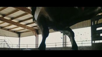 YETI Coolers TV Spot, 'PBR: Try and Love' - Thumbnail 2