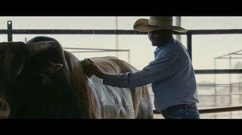 YETI Coolers TV Spot, 'PBR: Try and Love' - Thumbnail 8