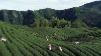 Taiwan Tourism Bureau TV Spot, 'Touring Taiwan by Train' - Thumbnail 6