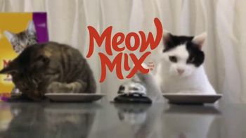 Meow Mix TV Spot, 'We'll Never Figure Them Out: Party' - Thumbnail 9