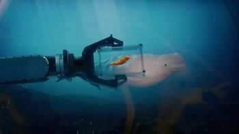 Cheetos TV Spot, 'Beluga Whale' - Thumbnail 8