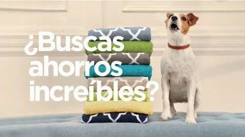 JCPenney TV Spot, '¿Buscas ahorros?' [Spanish] - Thumbnail 2