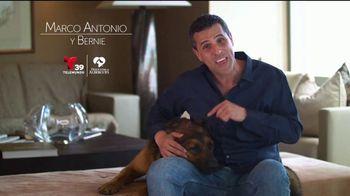Desocupar los Albergues TV Spot, 'Marco Antonio y Bernie' [Spanish] - Thumbnail 6