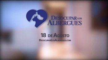 Desocupar los Albergues TV Spot, 'Marco Antonio y Bernie' [Spanish] - Thumbnail 5