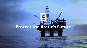 World Wildlife Fund TV Spot, 'Protect the Arctic's Future' - Thumbnail 7