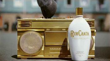 RumChata TV Spot, 'Caribbean Cream' - Thumbnail 1