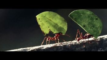 2019 GMC Terrain TV Spot, 'The Strength of an Ant' [T2]