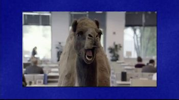 GEICO TV Spot, 'Jeopardy!: Hump Day'