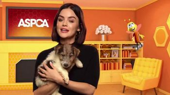 Honey Nut Cheerios Good Rewards TV Spot, 'Lucy Hale + ASPCA' - Thumbnail 7