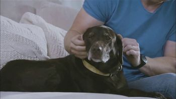 Banfield Foundation TV Spot, 'Pets and Disasters' Featuring Sean Lowe - Thumbnail 6