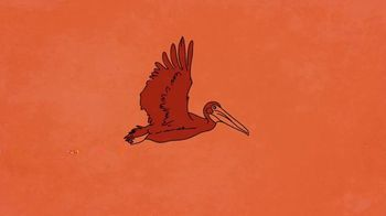 Popeyes TV Spot, 'TBS: Louisiana State Bird' - Thumbnail 3