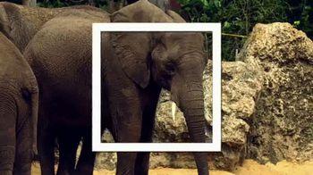 Walt Disney World TV Spot, 'Best Day Ever: Kilimanjaro Safaris' - Thumbnail 8