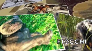 Fiocchi Friends and Friends Photo Contest TV Spot, 'Hunting Dog Rescue' - Thumbnail 1
