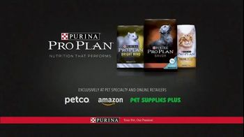 Purina Pro Plan TV Spot, 'Possibilities' - Thumbnail 10