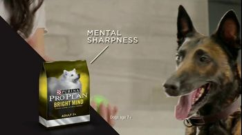 Purina Pro Plan TV Spot, 'Possibilities' - Thumbnail 3