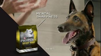 Purina Pro Plan TV Spot, 'Possibilities' - Thumbnail 4