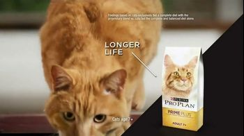 Purina Pro Plan TV Spot, 'Possibilities' - Thumbnail 6