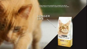 Purina Pro Plan TV Spot, 'Possibilities' - Thumbnail 7