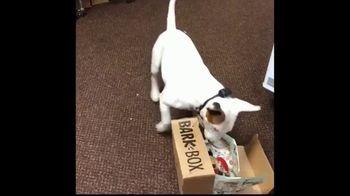 BarkBox National Dog Day Sale TV Spot, 'New Toy' - Thumbnail 2
