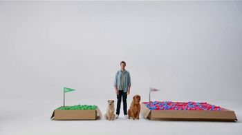 Pet Supplies Plus TV Spot, 'Boxes of Balls'