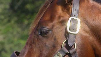 Claiborne Farm TV Spot, 'Runhappy: Undefeated' - Thumbnail 4