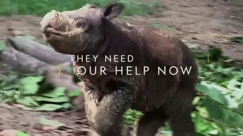 National Geographic TV Spot, 'Save the Sumatran Rhino'