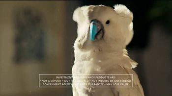 Chase Private Client TV Spot, 'Courage' - 1563 commercial airings