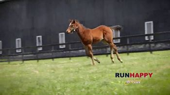Claiborne Farm TV Spot, 'Runhappy: Esteemed Champion' - Thumbnail 5