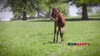 Claiborne Farm TV Spot, 'Runhappy: Esteemed Champion' - Thumbnail 6