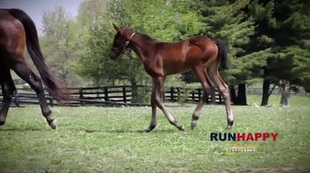 Claiborne Farm TV Spot, 'Runhappy: Esteemed Champion' - Thumbnail 7