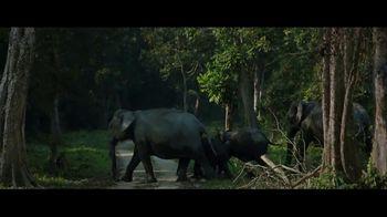 Incredible India TV Spot, 'The Sanctuary in Paris' - Thumbnail 3