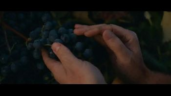 Welch\'s TV Spot, \'Tough as Grapes\'