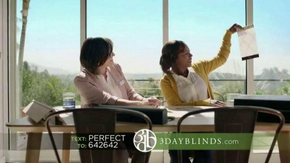 3 Day Blinds TV Commercial, 'Designer Stories Text URL'