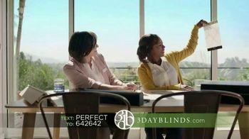 3 Day Blinds TV Spot, 'Designer Stories Text URL'