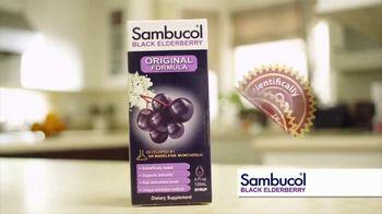 Sambucol TV Spot, 'Immunities' - Thumbnail 5