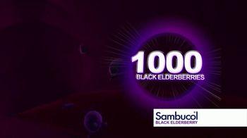 Sambucol TV Spot, 'Immunities' - Thumbnail 7