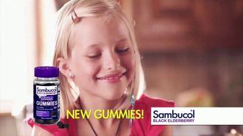 Sambucol TV Spot, 'Immunities' - Thumbnail 9