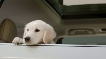 Subaru TV Spot, 'Clear the Shelters: Drop Off' [T1] - Thumbnail 3