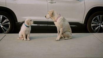 Subaru TV Spot, \'Clear the Shelters: Drop Off\' [T1]