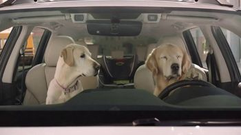 Subaru TV Spot, 'Clear the Shelters: Drop Off' [T1] - Thumbnail 7