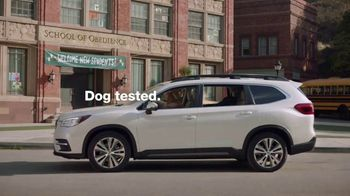 Subaru TV Spot, 'Clear the Shelters: Drop Off' [T1] - Thumbnail 8