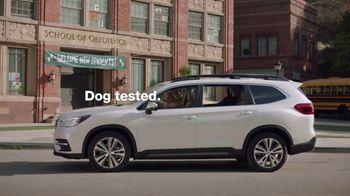 Subaru TV Spot, 'Clear the Shelters: Drop Off' [T1] - Thumbnail 8