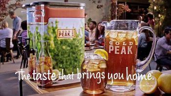 Gold Peak Iced Tea TV Spot, 'Birthday: My Idea' - Thumbnail 9