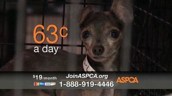 ASPCA TV Spot, 'If They Had a Voice' Featuring Eric McCormack - Thumbnail 5