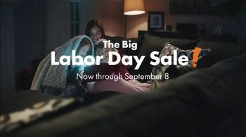 Big Lots Big Labor Day Sale TV Spot, 'Loveseats, Sofas and Sectionals'