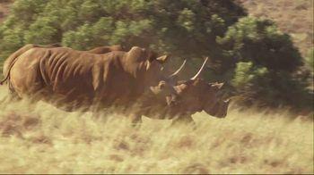 WildAid TV Spot, 'Jurassic World' Featuring Bryce Dallas Howard - Thumbnail 4