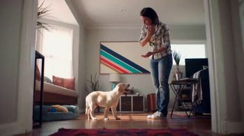 Southeastern Guide Dogs TV Spot, 'Imperfect Puppy Raiser'