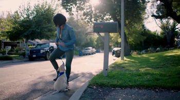 Southeastern Guide Dogs TV Spot, 'Imperfect Puppy Raiser' - Thumbnail 7